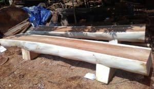 Suar Wood Log Bench